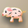 catch pig 抓猪