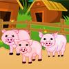 Baby Piggy Care
