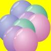Bubbly Poppy