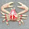 Crab Attack