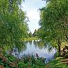 Jigsaw: Green Pond