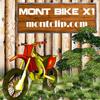 Mont Bike X1