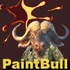 PaintBull-3