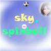 Sky Spinball