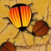 Time 4 ladybug