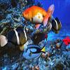 Underwater Adventure Hidden Object